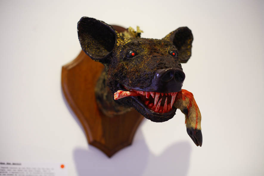 `hyene des marais`, Thomas Suire